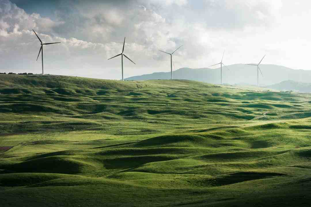 What is the most important factor in sustainability?